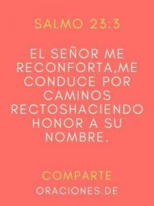 El-Señor-me-reconforta-me-conduce-por-caminos-rectoshaciendo-honor-a-su nombre-salmo-23-3